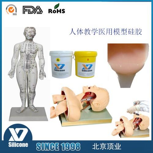 医用模型皮肤胶 医学教学模具硅胶 液体硅胶厂家