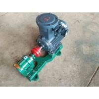 陕西齿轮油泵厂家加工/世奇油泵/订购2CY系列齿轮泵