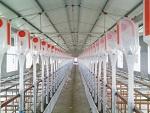 上海「自动料线」多少钱京金机械养殖料塔@贴心售后