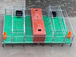 吉林@母猪产床价格「志航机械模具」双体母猪产床-规格多样