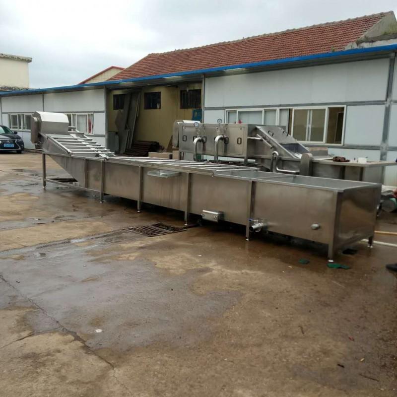 果蔬清洗机厂家 脱水蔬菜加工设备 清洗苹果设备