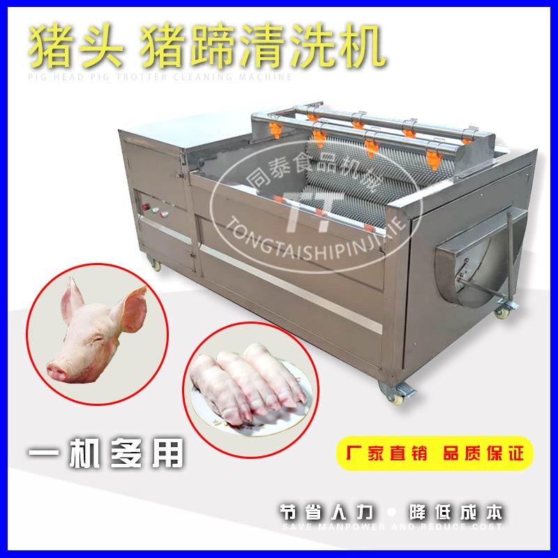 小型猪头清洗机 专业洗猪蹄羊蹄清洗机机器