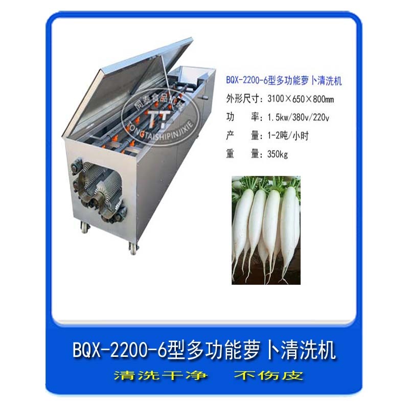 小型洗萝卜机器 白萝卜清洗机 洗萝卜机生产厂家