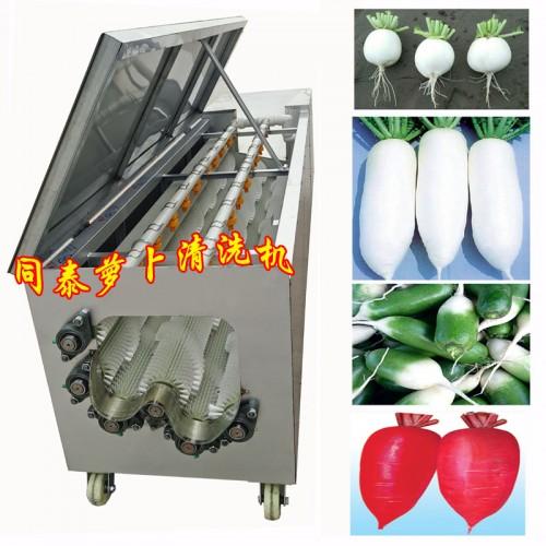 自动洗红萝卜机器 毛刷螺旋式萝卜清洗机 萝卜清洗去泥机