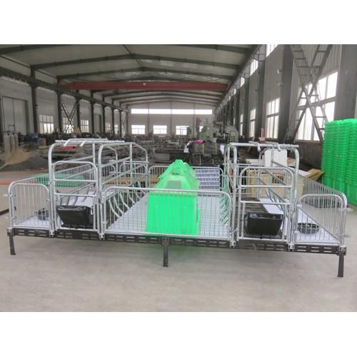 青海西宁铸铁母猪产床「志航机械」双体母猪产床出售