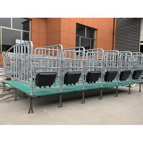甘肃兰州复合板定位栏「志航机械」母猪产床报价