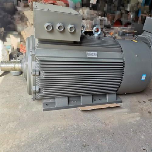 衡水永动YE2系列电机高效节能电机YE2电机生产厂家