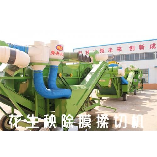 揉丝机厂家 花生秧除膜粉碎机 勇杰机械