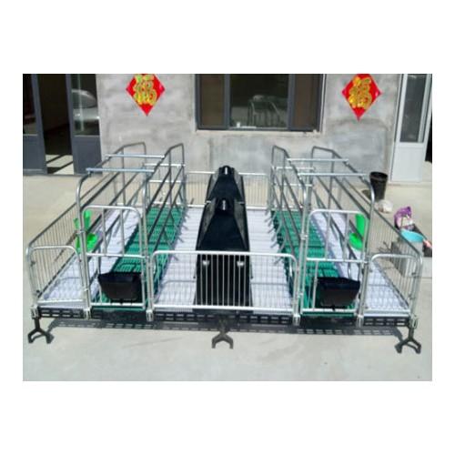 海南小猪保育床价格「旺农畜牧设备」复合板保育床|诚信经营