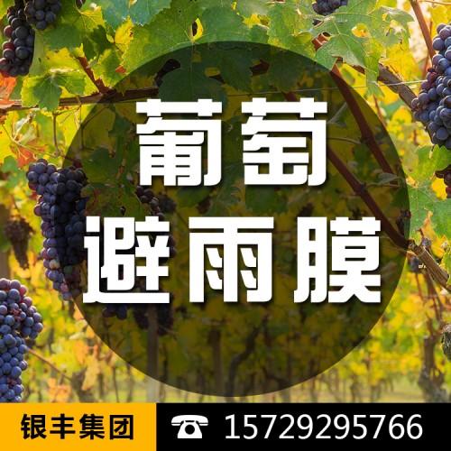 农用薄膜温室大棚流滴棚膜批发生产厂家直销葡萄用大棚膜抗老化