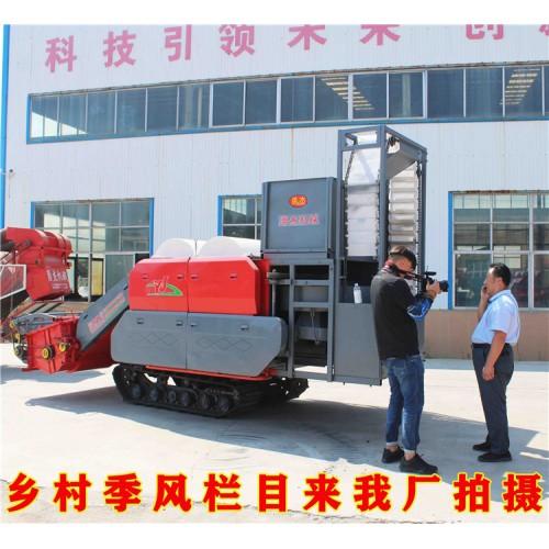 自动捡拾花生摘果机厂家 自走式花生摘果机 勇杰机械