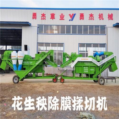 花生秧除膜机 秸秆饲料揉丝机 大型花生秧除膜粉碎机厂家