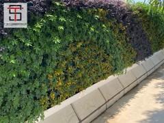 三田钢结构浅析这些行为会毁掉环保绿植植物墙围挡