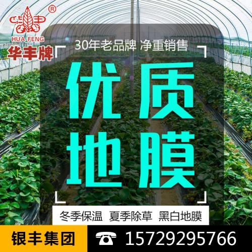 厂家供应PE黑色地膜遮光防草农膜农用塑料黑薄膜温室种植