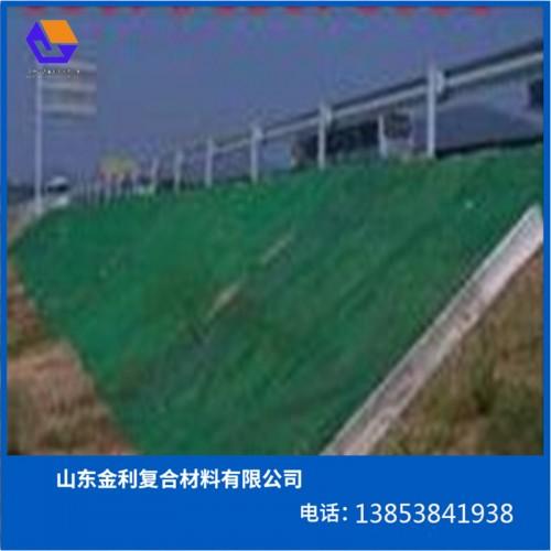 安徽三维植被网厂家、合肥EM3植被网规格
