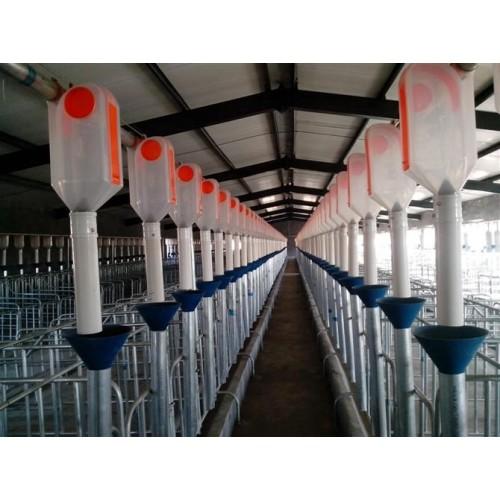 内蒙古自动养猪设备生产公司-泊头开元畜牧厂家订购自动喂料系统