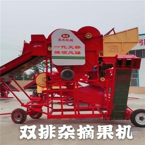 花生摘果机厂家 大型双排杂花生摘果机 勇杰机械