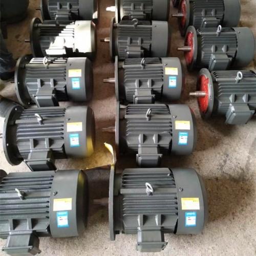 YE3高效节能电机 三相异步电动机 国标电机 衡水永动