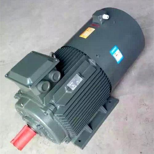 变频调速电动机 变频电机生产厂家 YTSP电机