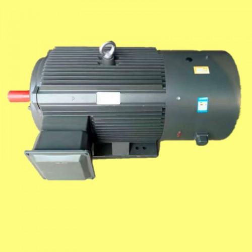 三相异步电动机 变频调速电机 变频电机 YTSP电机