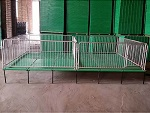甘肃兰州自动化养猪设备「金福临」猪场养猪料线@出售