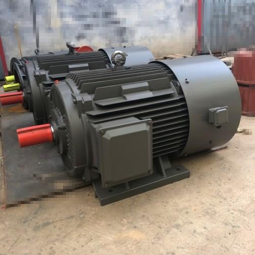 变频调速电动机 变频电机 YTSP电机 衡水永动