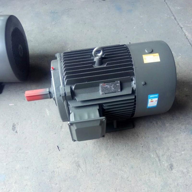 三项异步电动机 Y2系列电机 衡水永动 YE2-160L-4