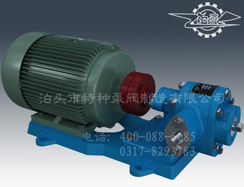山西不锈钢油泵批发-泊头特种泵厂价零售齿轮油泵