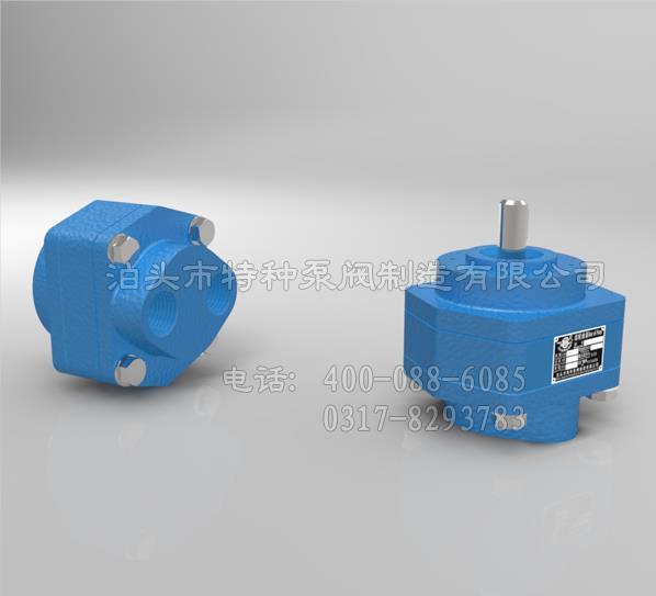 贵州油泵订做/泊特泵厂价直营CB-B齿轮泵