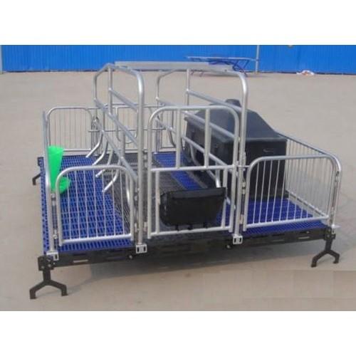 福建猪用产床制造厂家|沧州万晟畜牧设备定制单体产床